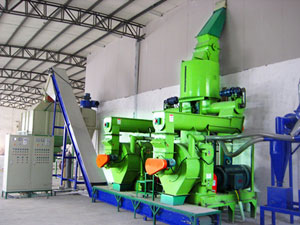 wood pellet mill in complete line