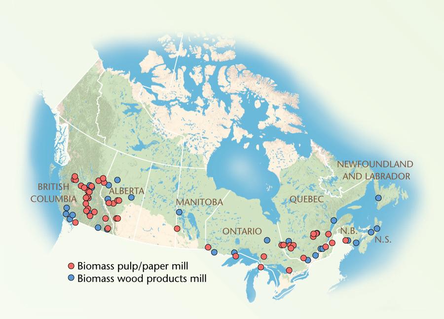 biomass energy in Canada